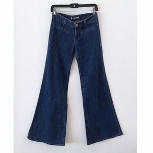 Hudson Vintage Wide Leg Flare Medium Wash Jeans/2